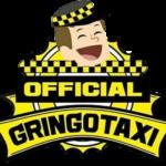 Trustworthy Gringo Taxi